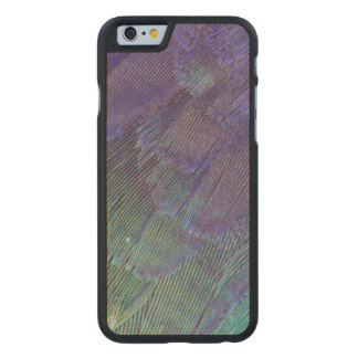 Lilac-breasted Roller feathers Carved Maple iPhone 6 Case