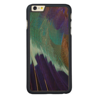 Lilac Breasted Roller feathers Carved Maple iPhone 6 Plus Case