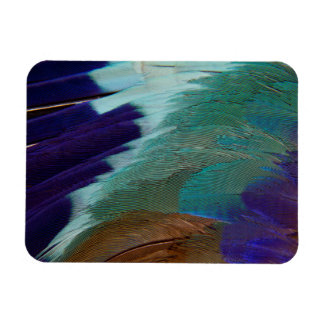 Lilac Breasted Roller feathers Rectangular Photo Magnet