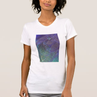 Lilac-breasted Roller feathers T-Shirt