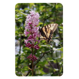 Lilac, butterfly, tiger butterfly, magnet