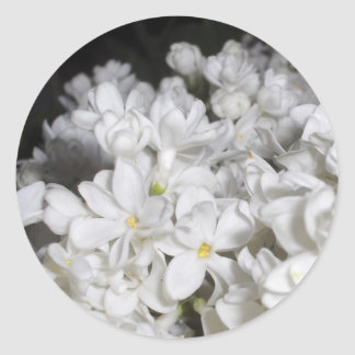 Lilac Classic Round Sticker