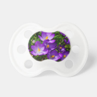 Lilac Crocuses Pacifier