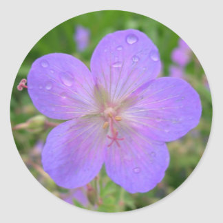 lilac flower stamp classic round sticker