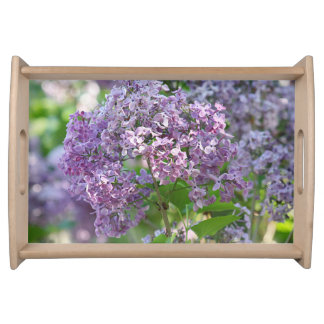 Lilac flowers serving tray
