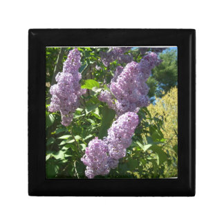 Lilac Jewelry Trinket Keepsake Box