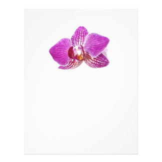 Lilac phalaenopsis floral aquarel painting letterhead