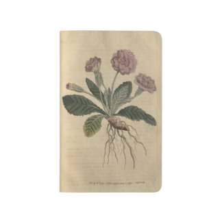 Lilac Primrose Journal