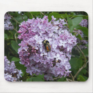 Lilac Tree Bumble Bee Mouse Pad