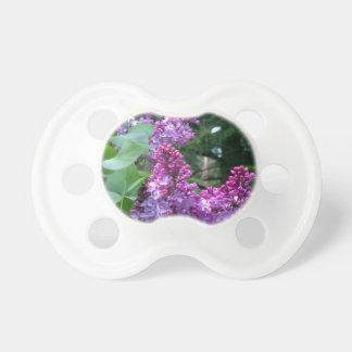Lilacs In Bloom Baby Pacifier