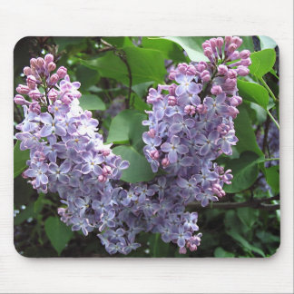 Lilacs Mouse Pad