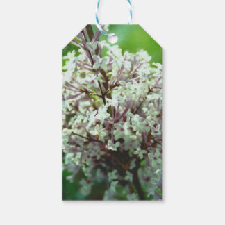 Lilacs Pack Of Gift Tags