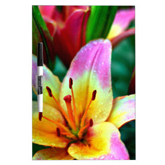Lilies in Rain Dry-Erase Boards