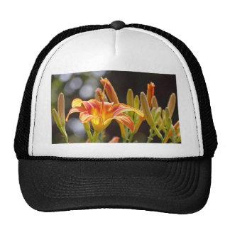 Lilies in the Sunshine Trucker Hat