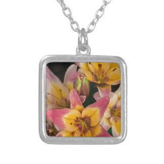 Lilies Silver Plated Necklace