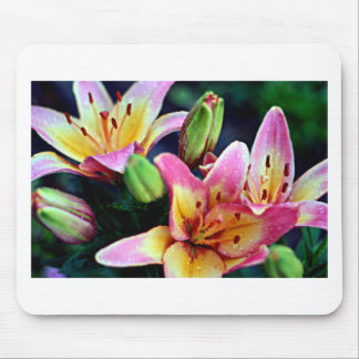Lilies with Rain Mouse Pad
