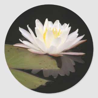 Lillies Classic Round Sticker