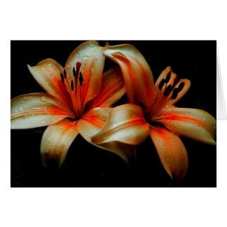 lillies notecard