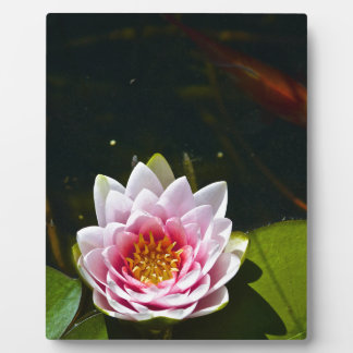 Lilly and Lotus Plaque