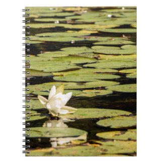 Lilly Pad Spiral Notebook