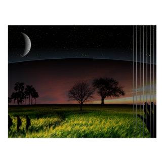 Lily Dream Postcard