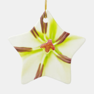 Lily flower close up ceramic star ornament
