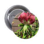 Lily Green Maroon Garden Flower Pinback Buttons