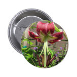Lily Maroon Green Flower Garden Pinback Buttons