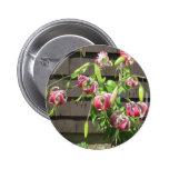 Lily Maroon Green Garden Flower Pinback Button