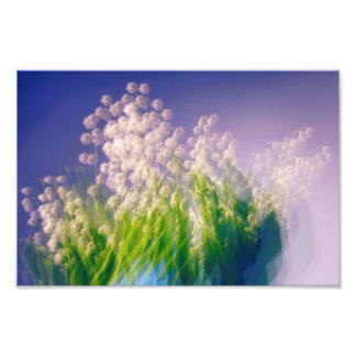 Lily of the Valley Dance in Blue Photo Print