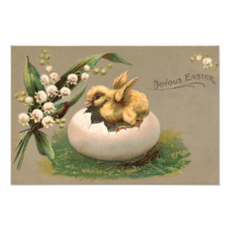 Lily Of The Valley Easter Chick Egg Photo Art