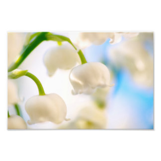 Lily of the Valley Flower Close-up Photo Print