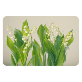 Lily of the Valley Flower Group Magnet