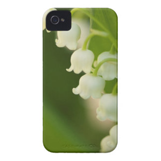 Lily of the Valley Flower iPhone 4 Cover
