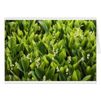 Lily of the Valley Flower Patch Card