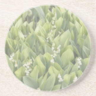 Lily of the Valley Flower Patch in Fog Coaster