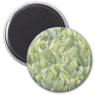 Lily of the Valley Flower Patch in Fog Magnet