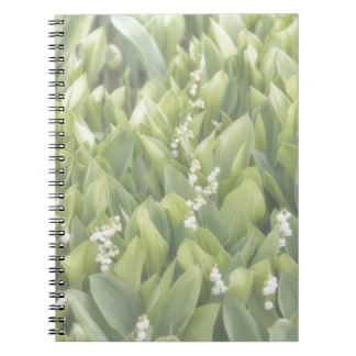 Lily of the Valley Flower Patch in Fog Notebooks