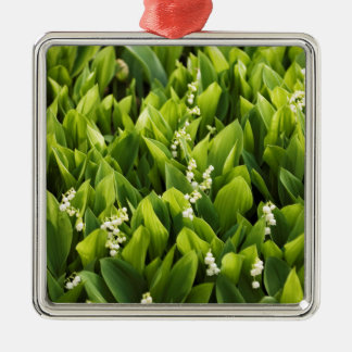 Lily of the Valley Flower Patch Silver-Colored Square Ornament