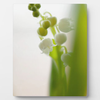 Lily of the Valley Flower Plaque