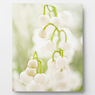 Lily of the Valley Flowers Plaque