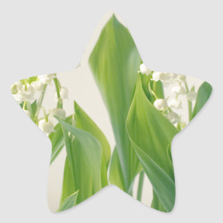 Lily of the Valley Star Sticker