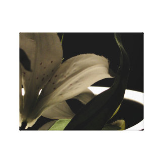 Lily on Lighted Mirror Canvas Print