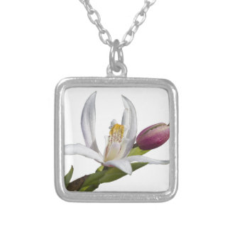lily on white background silver plated necklace