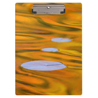 Lily pad on orange water, Canada Clipboard