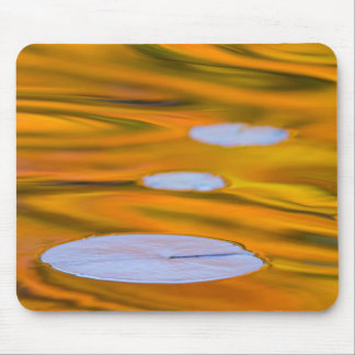 Lily pad on orange water, Canada Mouse Pad