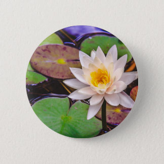 Lily pad on the water 2 inch round button