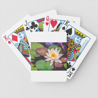 Lily pad on the water bicycle playing cards