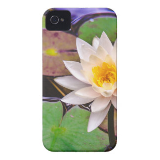 Lily pad on the water Case-Mate iPhone 4 case