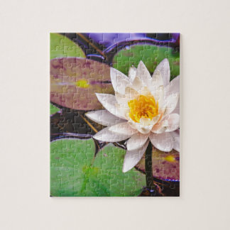 Lily pad on the water jigsaw puzzle